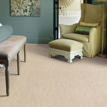 Caress Carpet by Shaw | Auburndale, FL